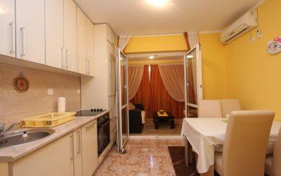 7391 One-bedroom apartment, Velji Vinogradi, Budva